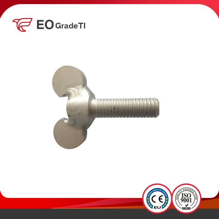 China Manufacturer Price for Titanium Wing Screws
