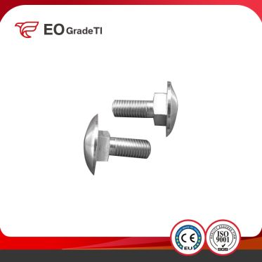 Titanium Carriage Bolts/Titanium Mushroom Head Bolts