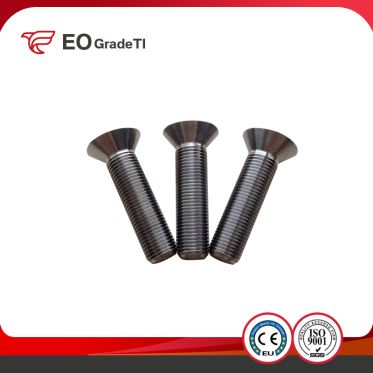 Titanium CSK Countersunk Head Screws