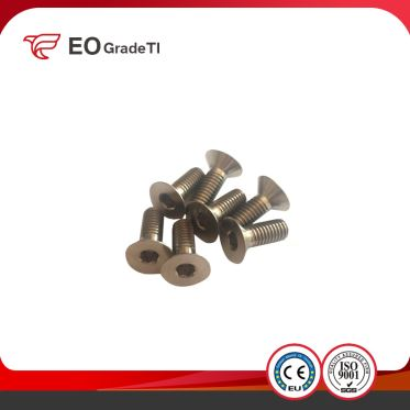 Titanium Fasteners Titanium Hex Socket Countersunk Head Screws