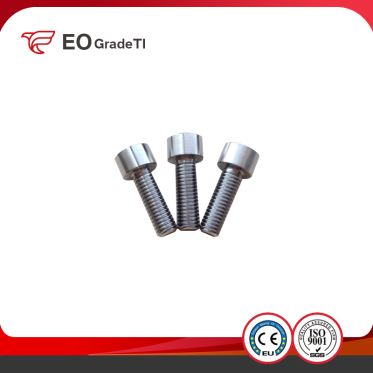 Titanium Hex Socket Cheese Head Cap Screws