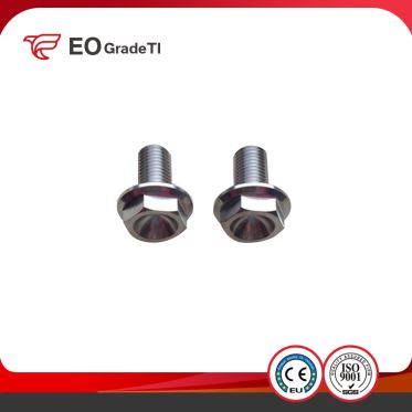Titanium Hexagon Hex Flange Bolts
