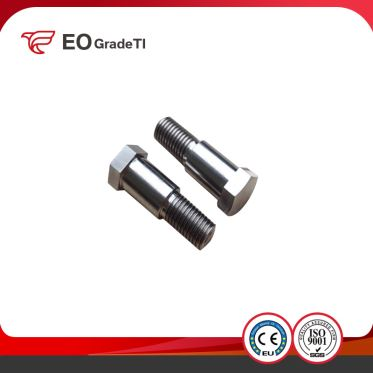 Titanium Hexagon Hex Head Bolts