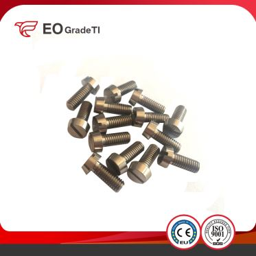 Titanium Slotted Cheese Head Screws