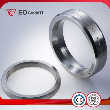 Corrosion Resistance Titanium Ring Joint Flanges
