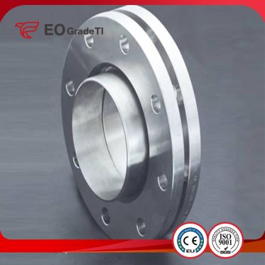 Grade 1 Titanium Ring Joint Flanges