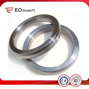 Grade 9 Titanium Ring Joint Flanges